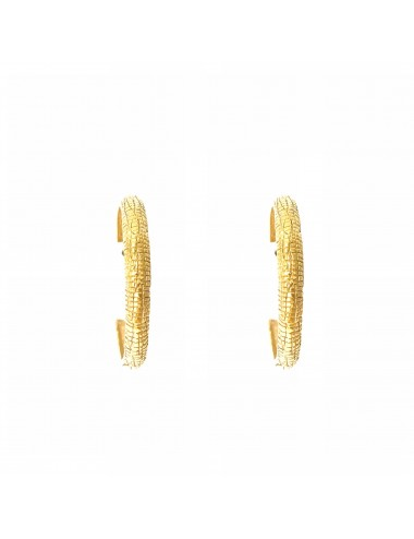 Nile Small Hoop Earrings in Sterling Silver Vermeil